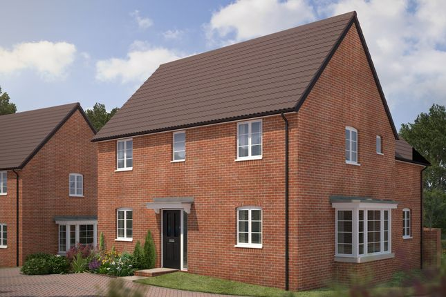 """Thumbnail Detached house for sale in """"The Claremont"""" at Bryony Road, Hamilton, Leicester"""