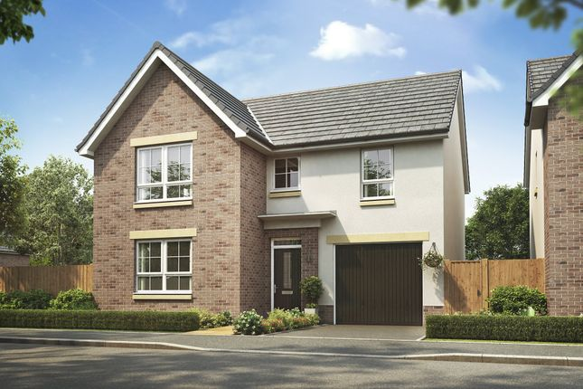 "Thumbnail Detached house for sale in ""Falkland"" at Frogston Road East, Edinburgh"