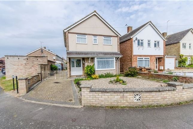 Thumbnail Detached house for sale in Chelwood Road, Cherry Hinton, Cambridge