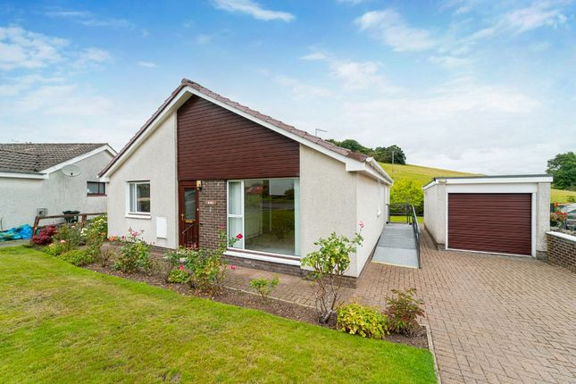 Thumbnail Bungalow for sale in Boyd Ave, Crieff