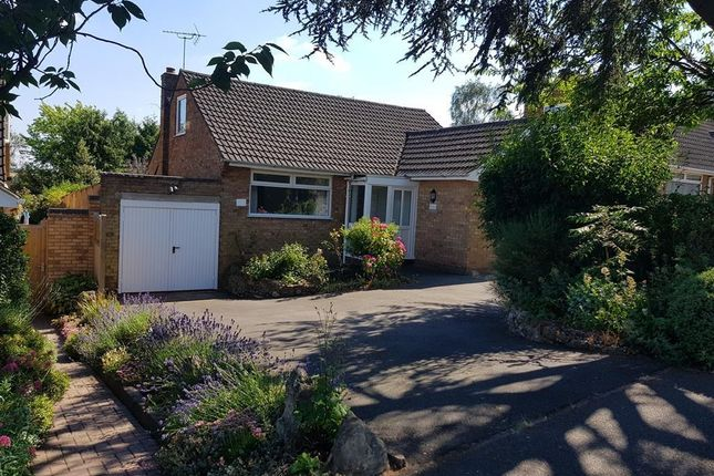 Thumbnail Bungalow to rent in Capell Rise, Flore, Northampton