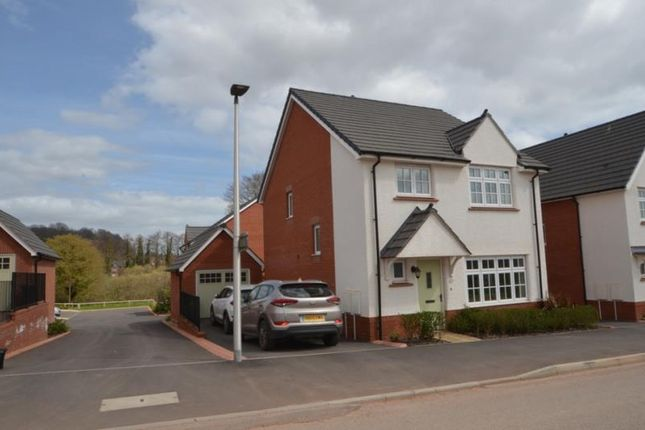 Thumbnail Detached house to rent in Swift Road, Dawlish