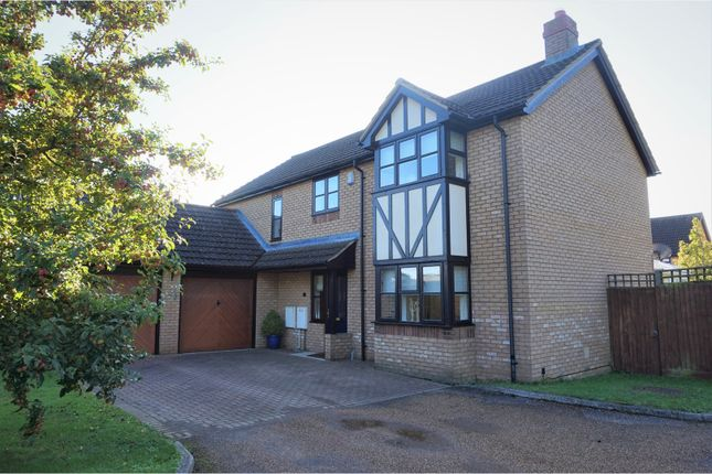 Thumbnail Detached house for sale in Roxton Road, Great Barford