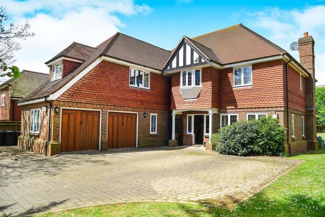Thumbnail Property to rent in The Drive, Hellingly, Hailsham