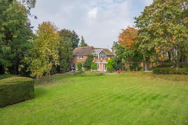 Thumbnail Detached house for sale in Cavendish, Sudbury, Suffolk