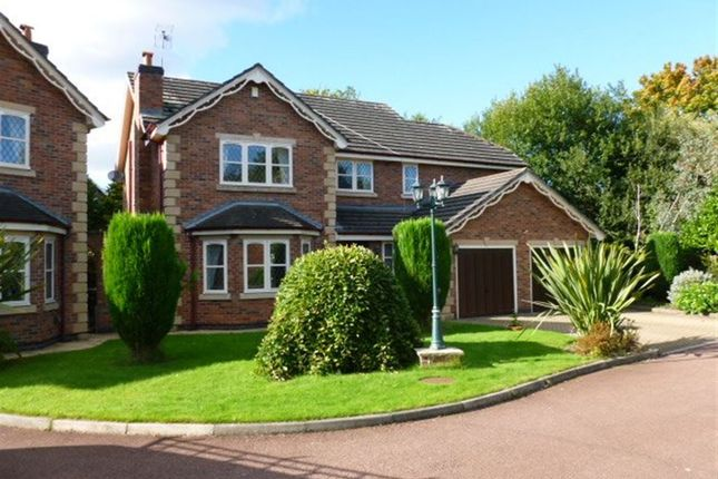 Thumbnail Detached house to rent in Cheltenham Drive, Sale, 2Dq.