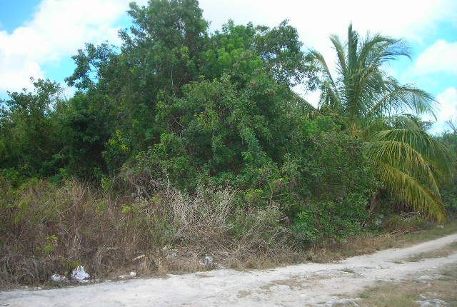 Land for sale in Carmichael Road, Nassau, The Bahamas