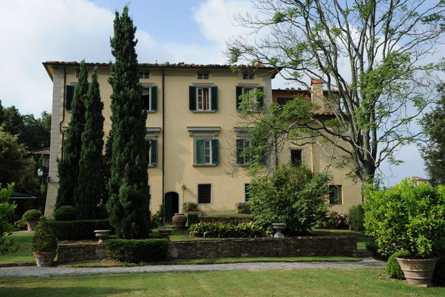 Photo of Camaiore, Camaiore, Italy