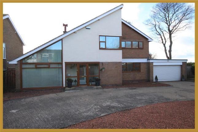 Thumbnail Detached house for sale in Sandgrove, Cleadon, Sunderland