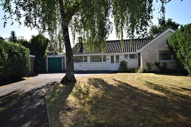 Thumbnail Detached bungalow for sale in Newfound Drive, Cringleford, Norwich