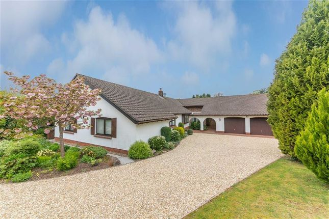Bungalow for sale in Millbrook, Llangwm, Usk, Monmouthshire