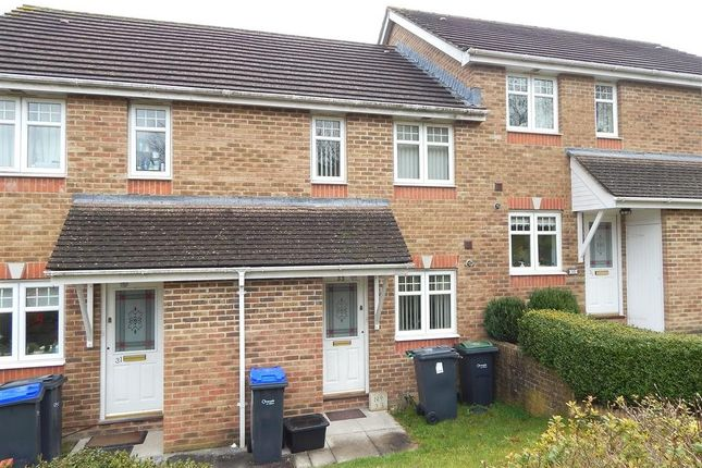 Thumbnail Property to rent in Bouchers Way, Salisbury