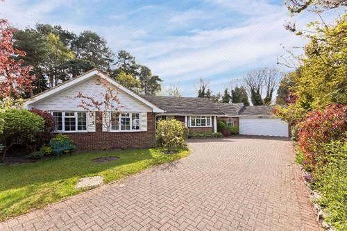 Thumbnail Detached bungalow for sale in Hurstwood, Ascot, Berkshire