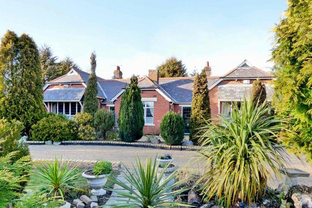 Thumbnail Detached bungalow for sale in Marsh Road, Halvergate, Norwich