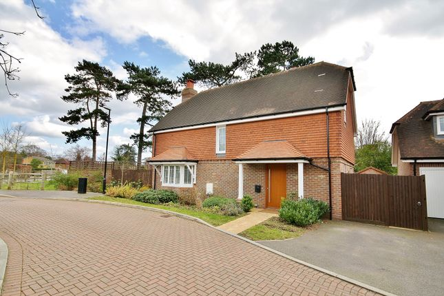 Thumbnail Detached house for sale in Skene Close, Send, Woking