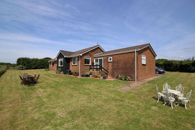 Thumbnail Detached bungalow for sale in Stoodleigh, Tiverton