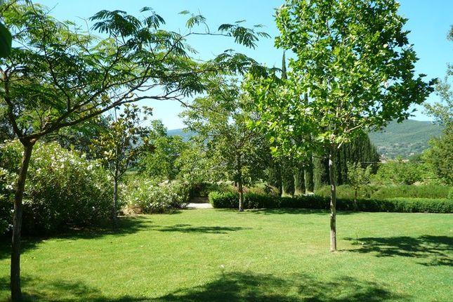 Garden 2 of Villa Cipressi, Cortona, Tuscany