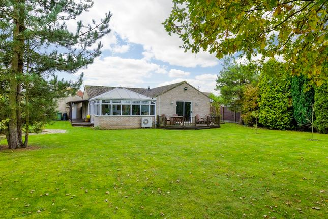 Thumbnail Detached bungalow for sale in Weeting, Brandon, Suffolk
