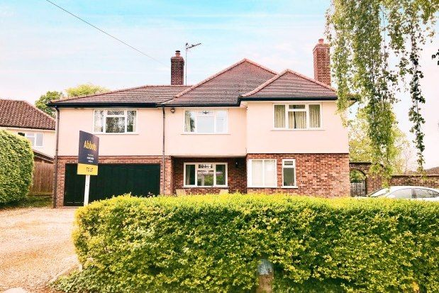 Thumbnail Property to rent in Bristol Road, Bury St. Edmunds