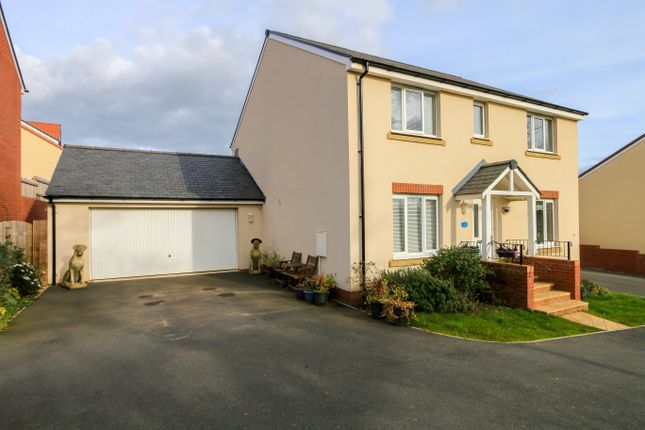 Thumbnail Detached house for sale in Pippin Share, Cranbrook, Exeter