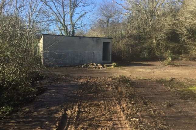 Land for sale in North Millcombe Farm, Blackawton, Totnes TQ9