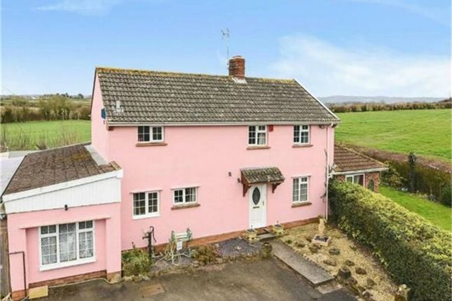 Thumbnail Detached house for sale in Honeysuckle House, Higher Comeytrowe, Taunton, Somerset