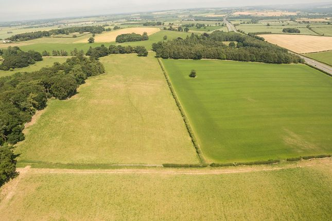 Thumbnail Land for sale in Land At Newton, Stocksfield, Northumberland