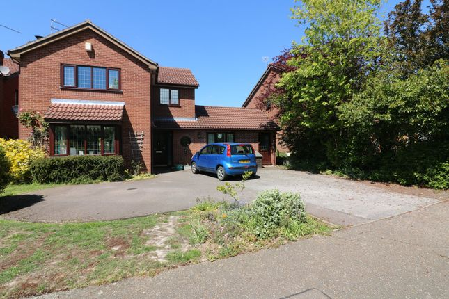 Thumbnail Detached house for sale in Cobbold Street, Roydon, Diss