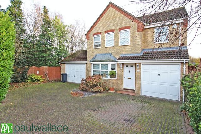 Thumbnail Detached house to rent in Sheriden Walk, Broxbourne