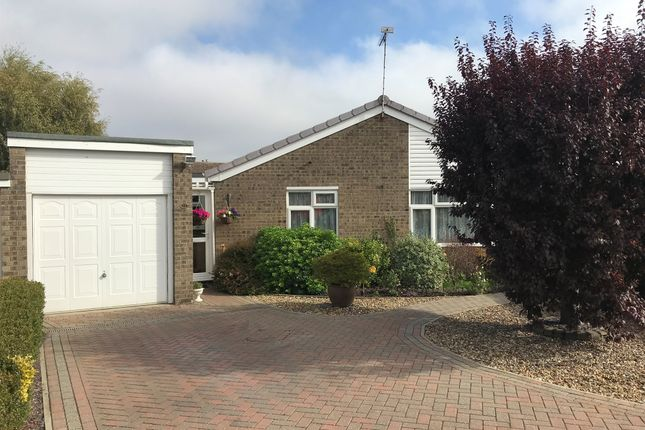 Thumbnail Detached bungalow for sale in Highlands, Thetford