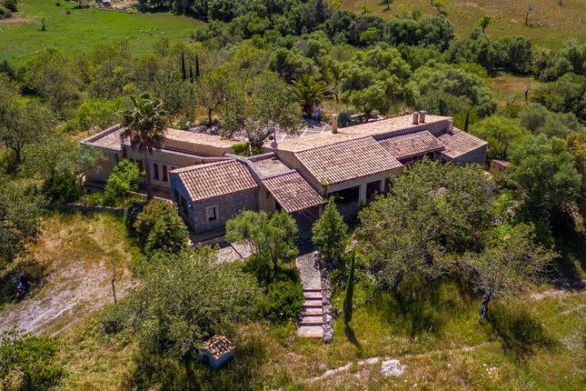Arta Countryside, Mallorca, Balearic Islands