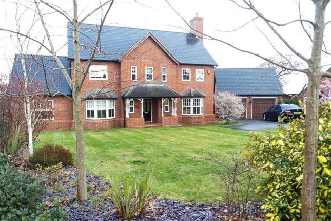 Thumbnail Detached house to rent in Kingsdown Close, Wychwood Park, Weston, Crewe