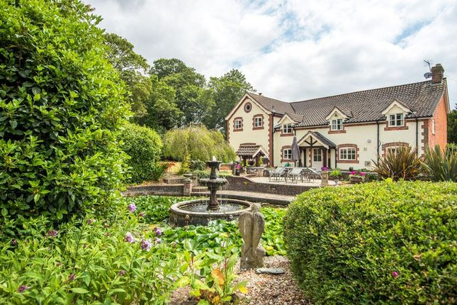 Thumbnail Detached house for sale in Walcot Green, Diss, Norfolk