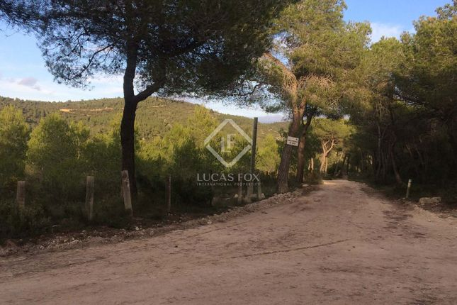 Thumbnail Country house for sale in Spain, Barcelona, Sitges, Penedès, Sit7418