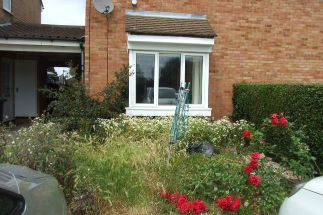 Thumbnail Semi-detached house to rent in Lincoln Crescent, Biggleswade