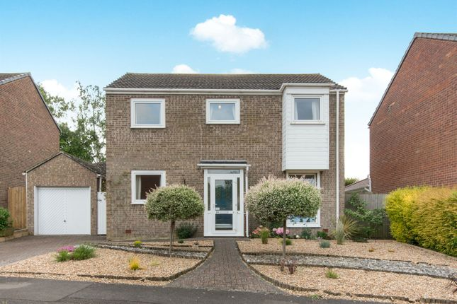 Thumbnail Detached house for sale in Elmdale Close, Warsash, Southampton