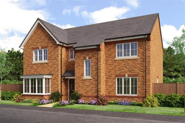 "Thumbnail Detached house for sale in ""Rosebury"" at Backworth, Newcastle Upon Tyne"