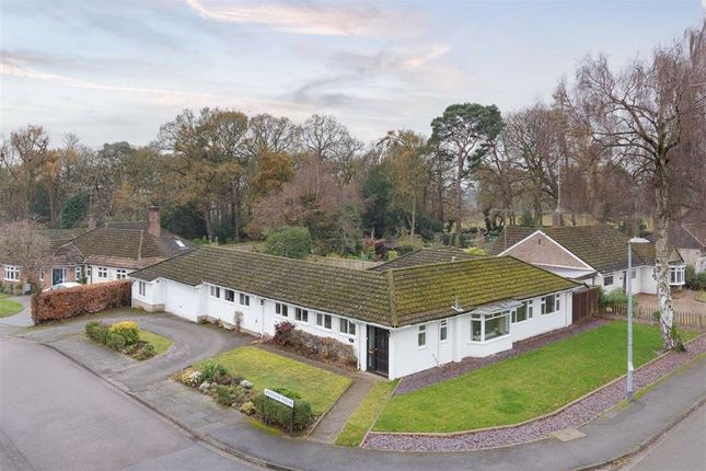 Thumbnail Detached bungalow for sale in Taylors Ride, Leighton Buzzard
