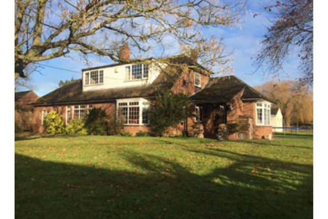 Thumbnail Equestrian property for sale in Parsons Hill, Colchester