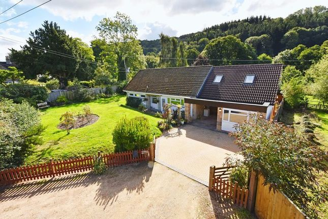 Thumbnail Detached bungalow for sale in Coughton, Ross-On-Wye