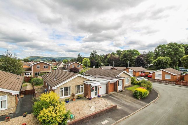 Thumbnail Bungalow for sale in Glandwr Park, Builth Wells