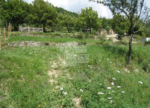 Land for sale in 06380, Moulinet, Fr