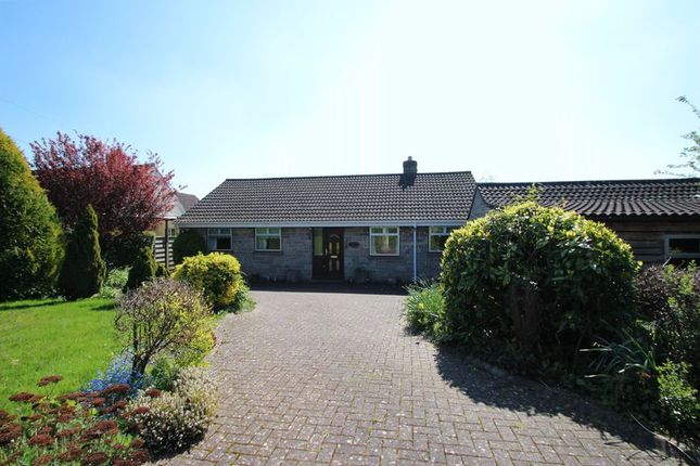 Thumbnail Detached bungalow for sale in Ridgeway, Ashcott, Bridgwater