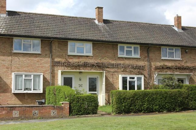 Thumbnail Property to rent in Willow Way, Woking
