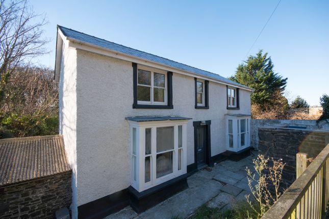 Thumbnail Detached house to rent in Quebec Road, Llanbadarn Fawr, Aberystwyth