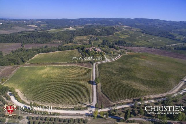 Thumbnail Farm for sale in Castellina In Chianti, Tuscany, Italy