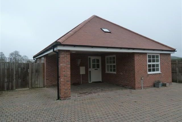 Thumbnail Detached bungalow to rent in Lutwyche Road, Church Stretton