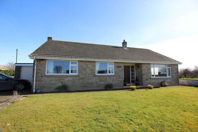 Thumbnail Bungalow to rent in Causewayhead, Silloth, Wigton