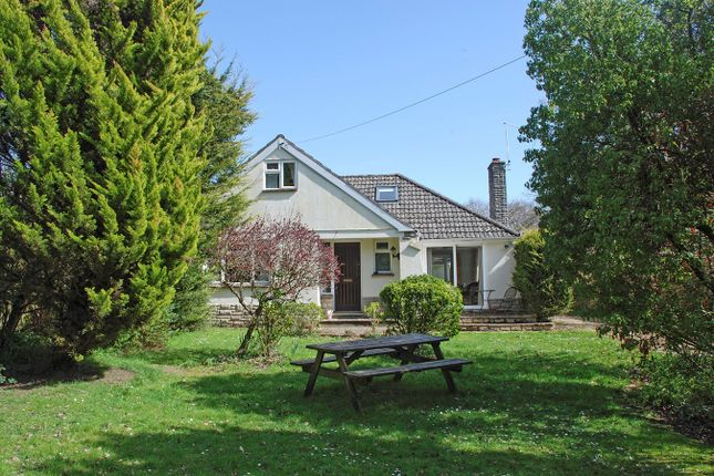 Thumbnail Detached bungalow for sale in Honey Lane, Burley, Ringwood