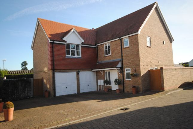 Thumbnail Detached house for sale in Whitehead Close, Writtle, Chelmsford